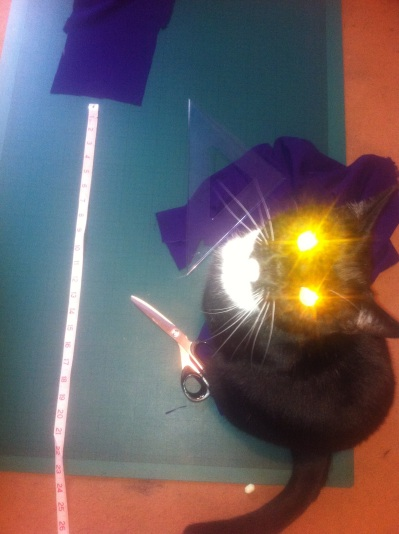 RocknRoll and his laser-beam kitty hypnosis skills.